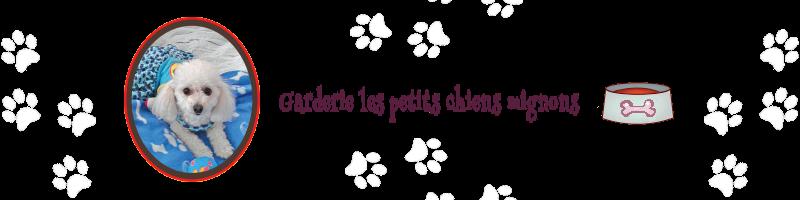 Logo de la Garderie les petits chiens mignons